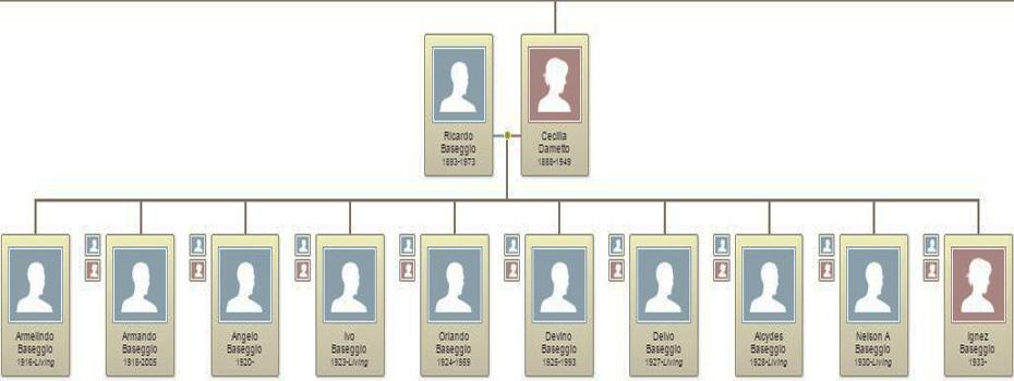 Descendentes de Cecília Dametto e Ricardo Baseggio.