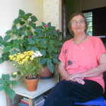 Amélia Regina Teló Dametto - 15/10/2015.