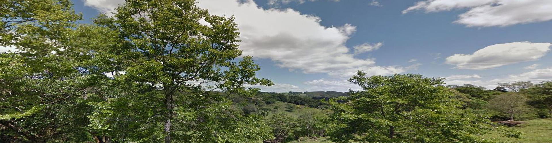 Arredores da Rua Buarque de Macedo, Linha Doze, Carlos Barbosa, RS | Google maps
