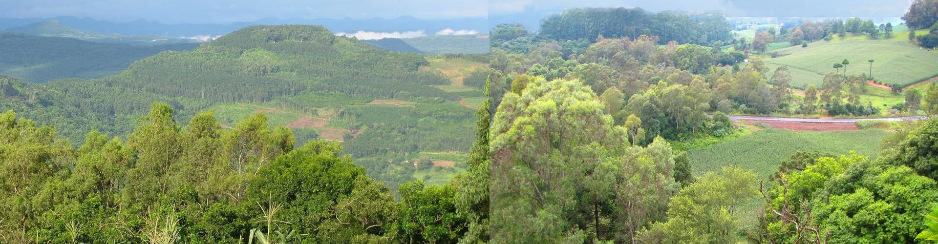 Carlos Barbosa, RS, duas vistas a partir do Morro do Calvário |http://www.skyscrapercity.com