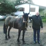Sergio Dametto e cavalo da raça crioula de Elias Dametto.