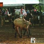 Elias Dametto em rodeio crioulo.