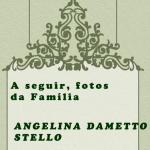 Lembrete Angelina Dametto